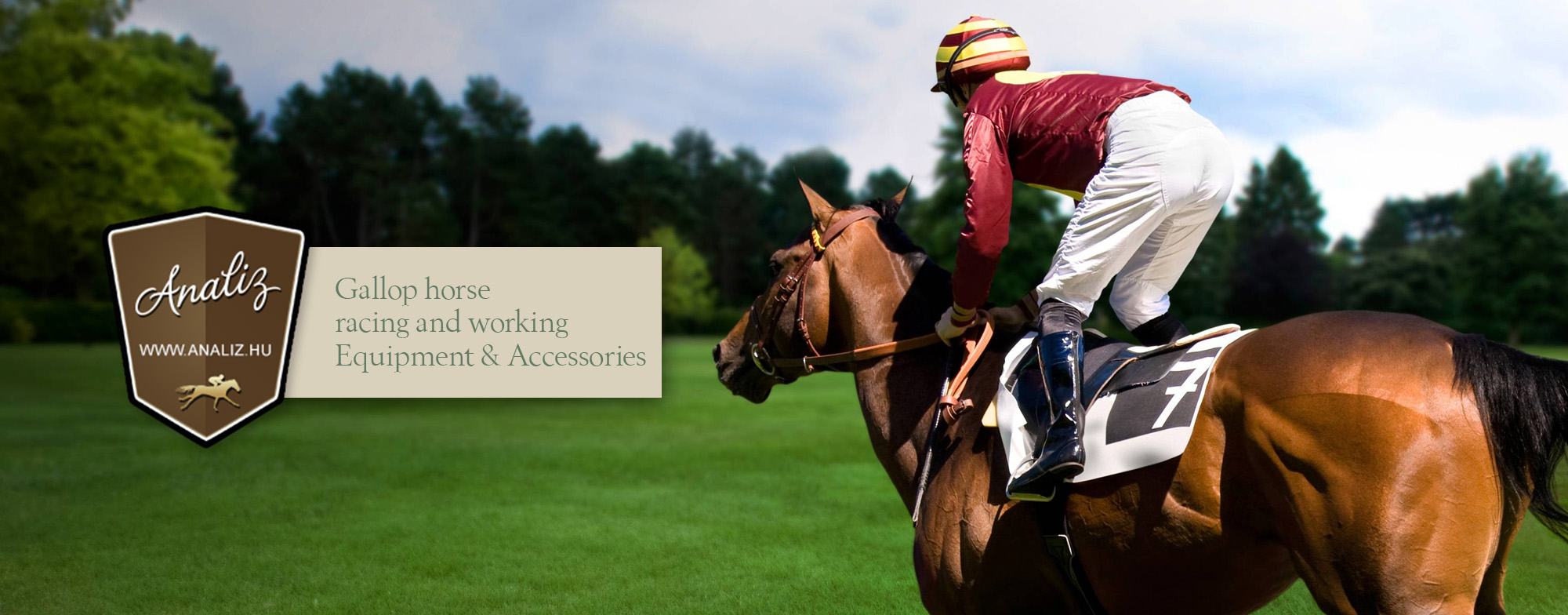 Gallop horse racing and working Equipment & Accessories